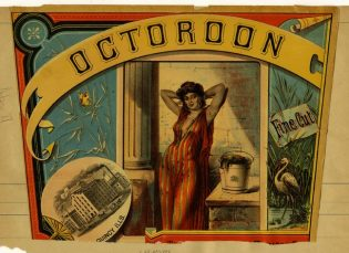 Blood Fractions: the Octoroon and Other Fantasies